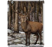 Forest Monarch iPad Case/Skin
