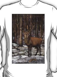 Forest Monarch T-Shirt