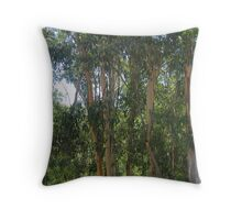 nature's abstracts 3 Throw Pillow