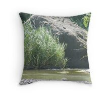 Rock in the stream  Throw Pillow