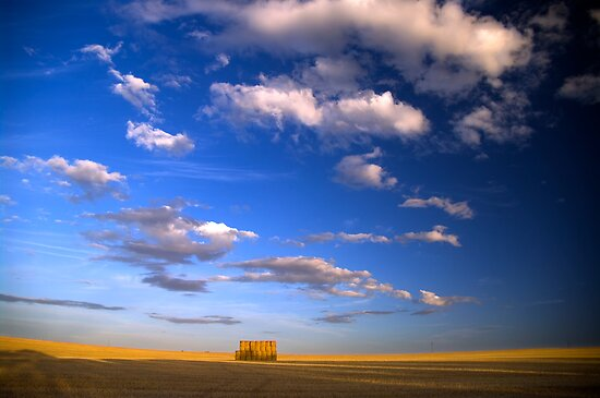 Big Sky by Mark Higgins