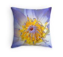 Blue Water Lily - Sydney Royal Botanic Gardens, NSW Throw Pillow