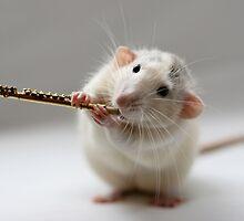 The flute by Ellen van Deelen