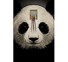 Panda window cleaner 03 Photographic Print