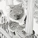 Afternoon Nap - Koala by Heather Ward