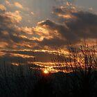 Colorado Sunset ... Colorado Springs by dfrahm