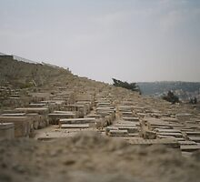 Mount Of Olives by Leticia Machado