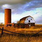 Evening at the Farm by Stevej46