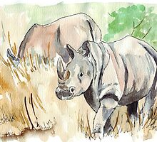 Rhinos close-by by Maree  Clarkson