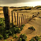 Provincetown Dunes by Philip James Filia