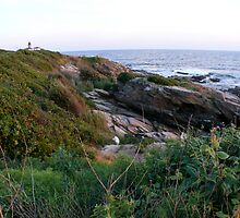 The Summer Bluffs at Beavertail by Jack McCabe