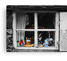 Squatters Toys Canvas Print
