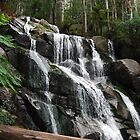 Torongo Falls Noojee by Tamara Bush