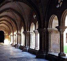 Se Velha Cathedral and Cloisters Coimbra by Caren della Cioppa