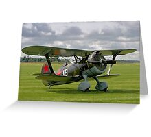 "Polikarpov I-15bis ""Chaika"" 4439 white 19 Greeting Card"