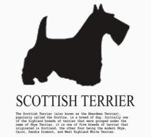 scottish terrier by benyuenkk