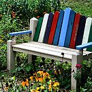 Bench of Color by shellyb