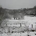 Winter v1.0.5 by Robiko