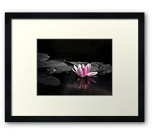 An Eye For An Eye, Will Make The Whole World Blind... Framed Print