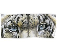 Eye-Catching Snow Leopard Poster