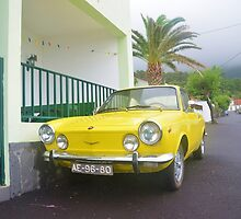 Classic Fiat 850 Sport by Malcolm Snook