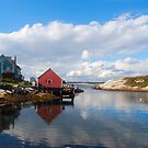 Peggy&#x27;s Cove Harbor  by Shane Shaw