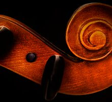 Cello by Linda  Morrison