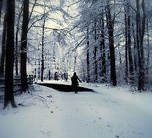 Winter Weather by allisonnnx