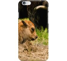 Bison And Calf iPhone Case/Skin