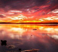 Sunrise over Cockle Beach by Cornelia Schulz