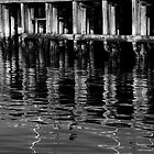 Pier Pleasure by Derek Kan
