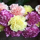 Bunch of Carnations by LoneAngel