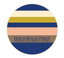 Bronze Winged Pionus Pallet by parrotproducts