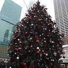 Christmas Tree, Bryant Park, New York City   by lenspiro