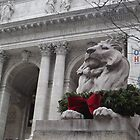 Lion Sculpture, New York Public Library, New York City by lenspiro