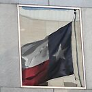 TEXAS flag in the window by declown