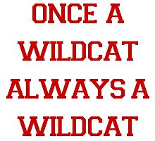 Once a Wildcat Always a Wildcat Photographic Print