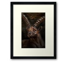 Ibex - Photoshop Manipulation Framed Print