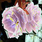 Velveted Roses by KazM
