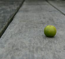 Lime No. 2 by Derek Kan