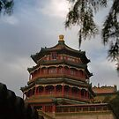 View from the Summer Palace in China by Merilyn