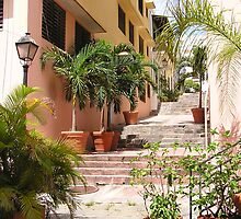 Old San Juan 1 by Christine Frydenborg Dargon