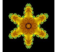 Yellow Star Photographic Print