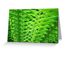 Patterns in Nature  Greeting Card
