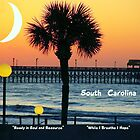 South Carolina edit 2 by jhell2