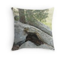 rock study Throw Pillow
