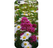 Valerian and Oxeye Daisies iPhone Case/Skin