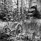 23.12.2014: Old Wheels by Petri Volanen