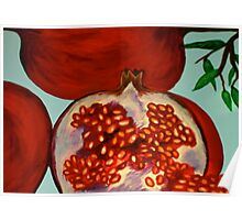 picked off the pomegranate tree Poster