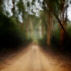 Track Blur by Peter Evans